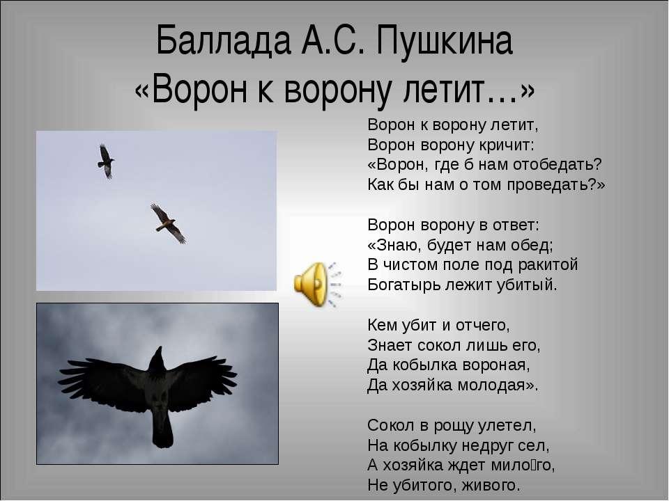 Баллада А.С. Пушкина «Ворон к ворону летит…» Ворон к ворону летит, Ворон воро...