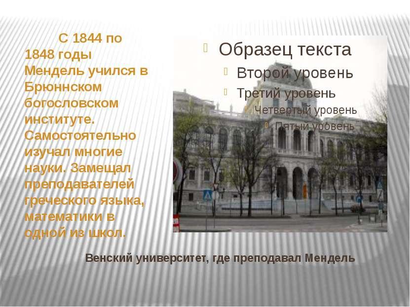 Венский университет, где преподавал Мендель С 1844 по 1848 годы Мендель училс...