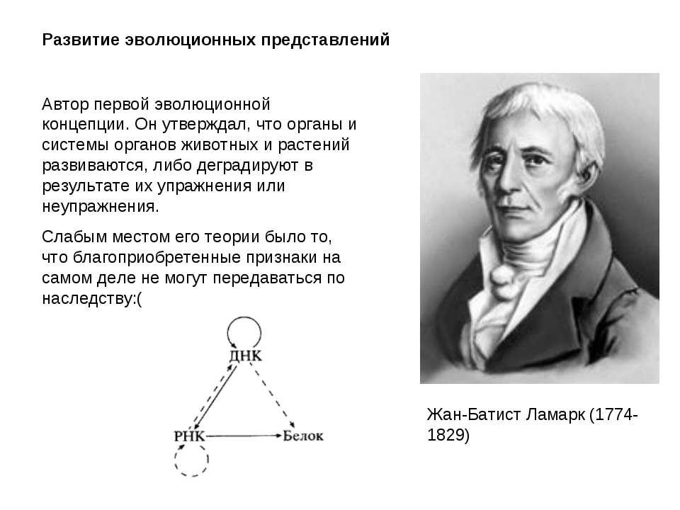 Развитие эволюционных представлений Жан-Батист Ламарк (1774-1829) Автор перво...