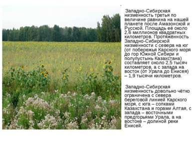 Западно-Сибирская низменность третья по величине равнина на нашей планете пос...