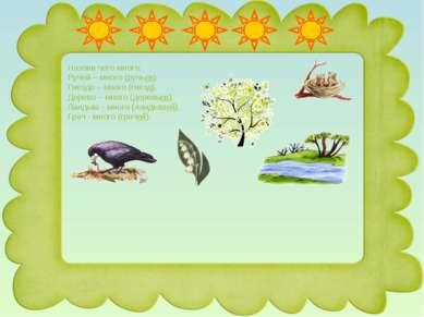 Назови чего много: Ручей – много (ручьев). Гнездо – много (гнезд). Дерево – м...