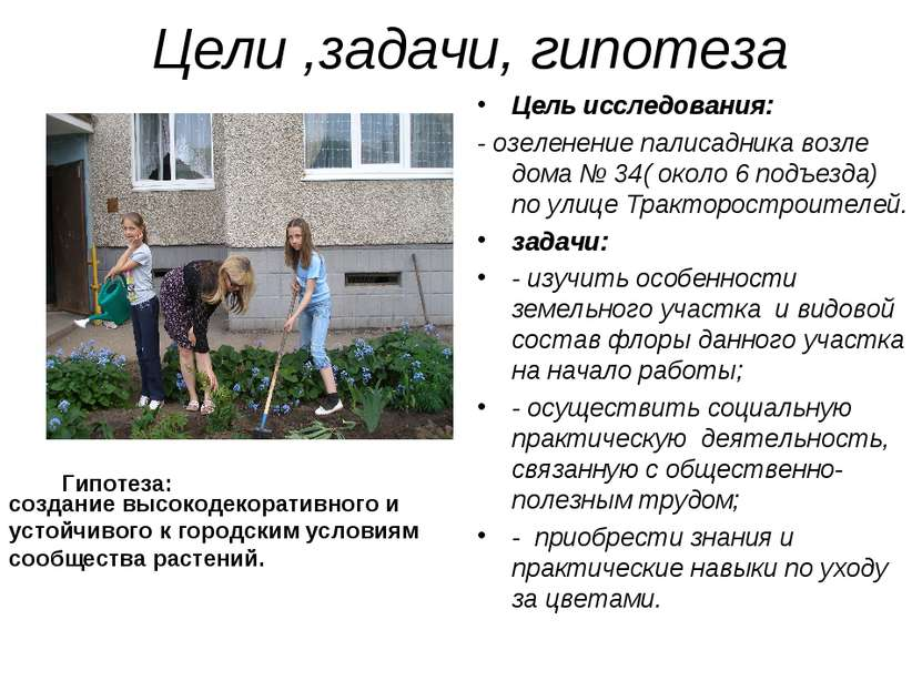 Цели ,задачи, гипотеза Цель исследования: - озеленение палисадника возле дома...