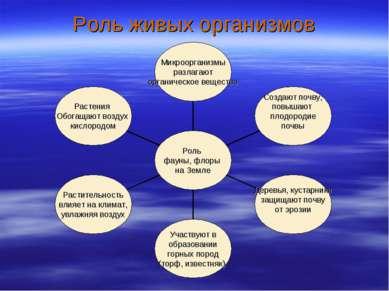 Роль живых организмов