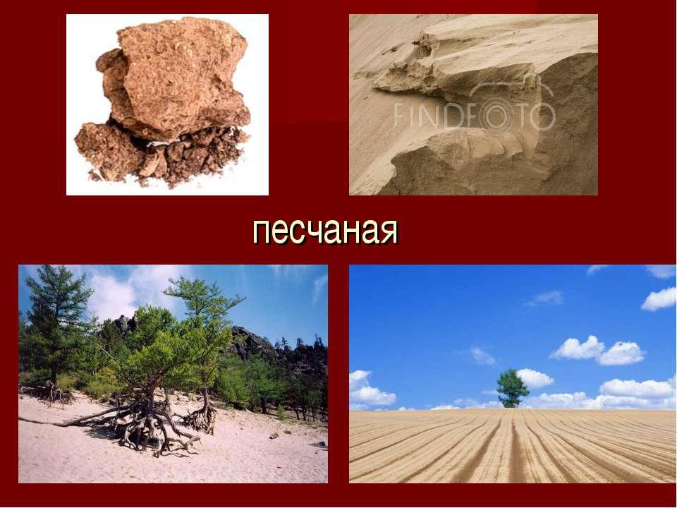 песчаная