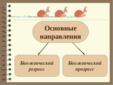 Основные направления Биологический регресс Биологический прогресс