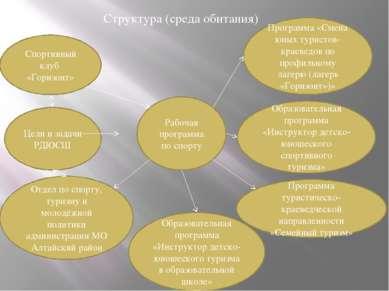 Рабочая программа по спорту Структура (среда обитания) Спортивный клуб «Гориз...