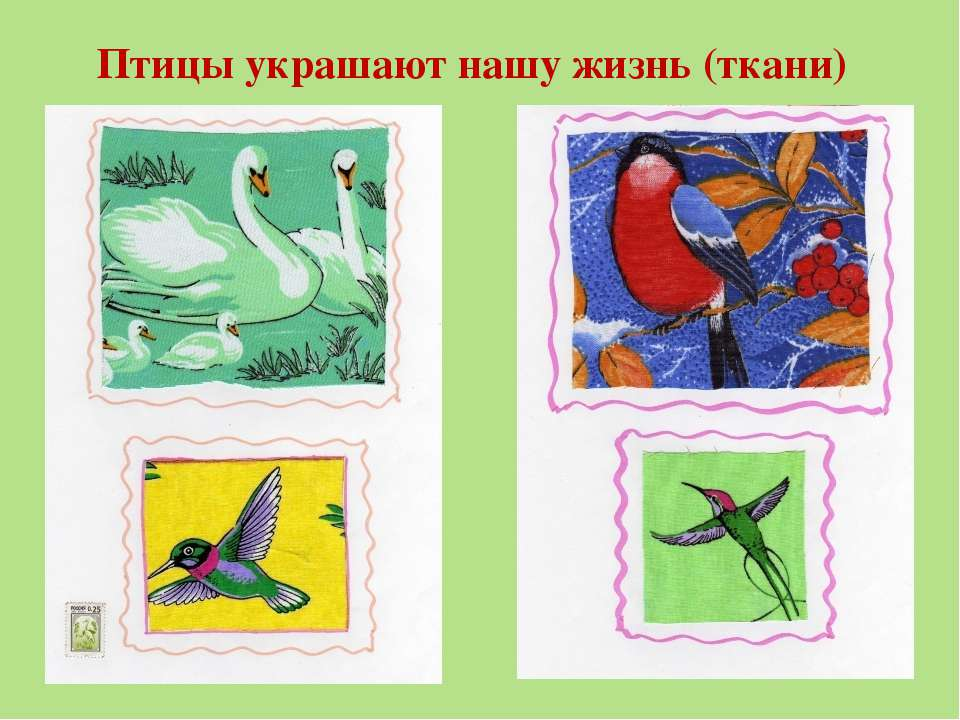 Птицы украшают нашу жизнь (ткани)