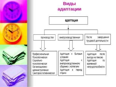 Виды адаптации