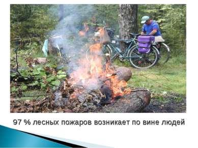 97 % лесных пожаров возникает по вине людей
