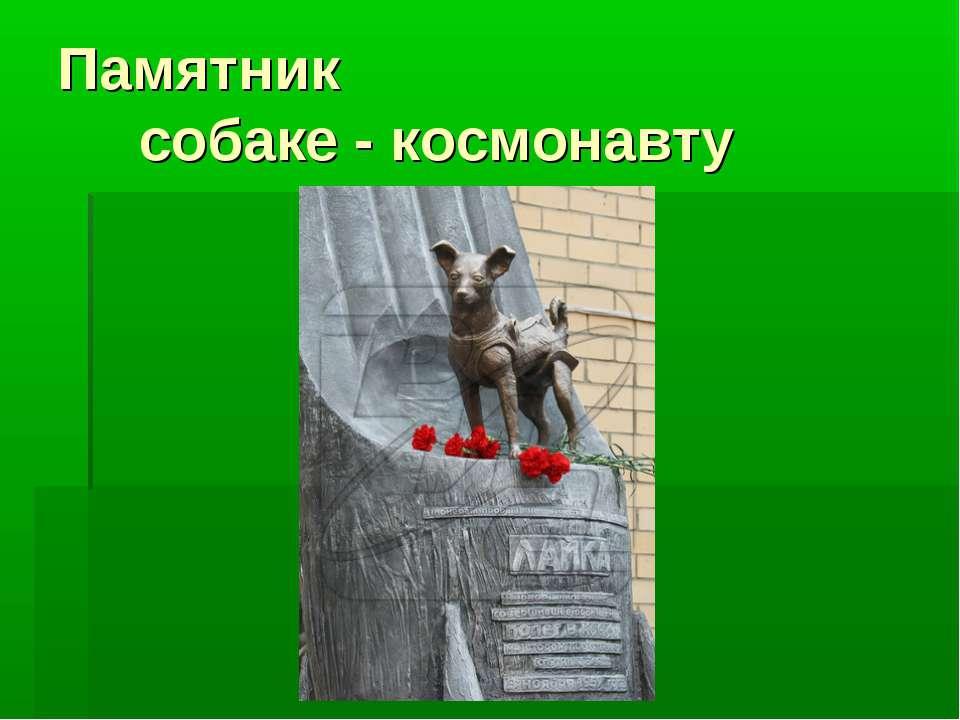 Памятник собаке - космонавту