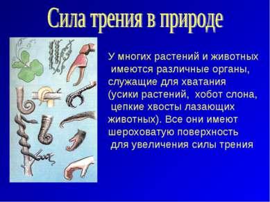 У многих растений и животных имеются различные органы, служащие для хватания...