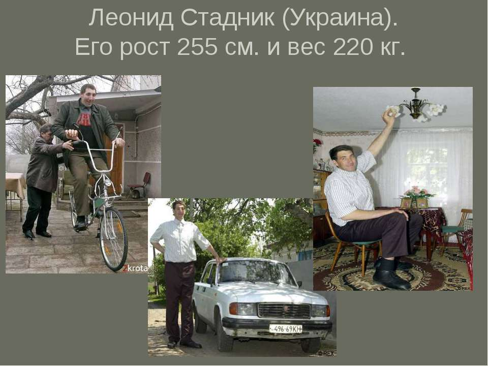 Леонид Стадник (Украина). Его рост 255 см. и вес220 кг.