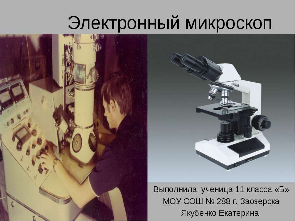 Электронный микроскоп Выполнила: ученица 11 класса «Б» МОУ СОШ № 288 г. Заозе...