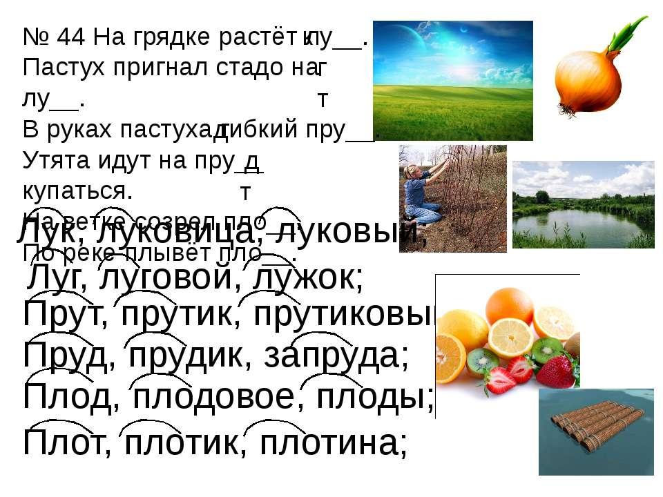Луг, луговой, лужок; Прут, прутик, прутиковый; Пруд, прудик, запруда; Плод, п...