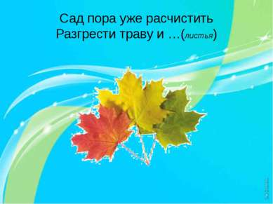 Сад пора уже расчистить Разгрести траву и …(листья)