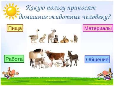 Какую пользу приносят домашние животные человеку? Пища Работа Материалы Общение
