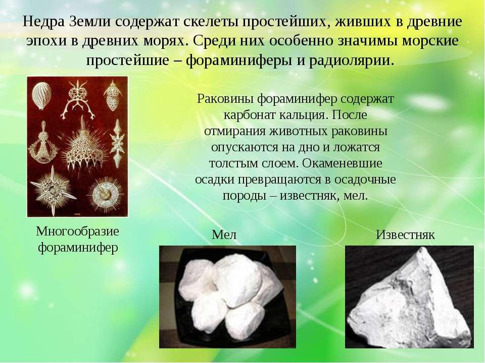 Недра Земли содержат скелеты простейших, живших в древние эпохи в древних мор...