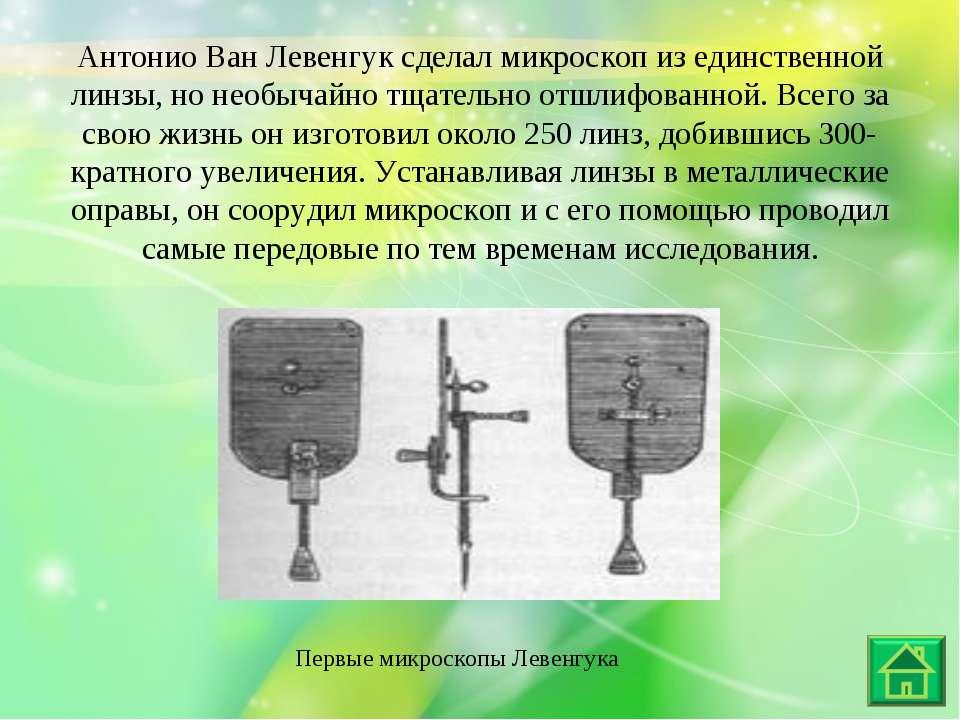 Первые микроскопы Левенгука Антонио Ван Левенгук сделал микроскоп из единстве...