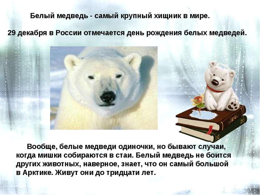 Белый медведь - самый крупный хищник в мире. Вообще, белые медведи одиночки, ...