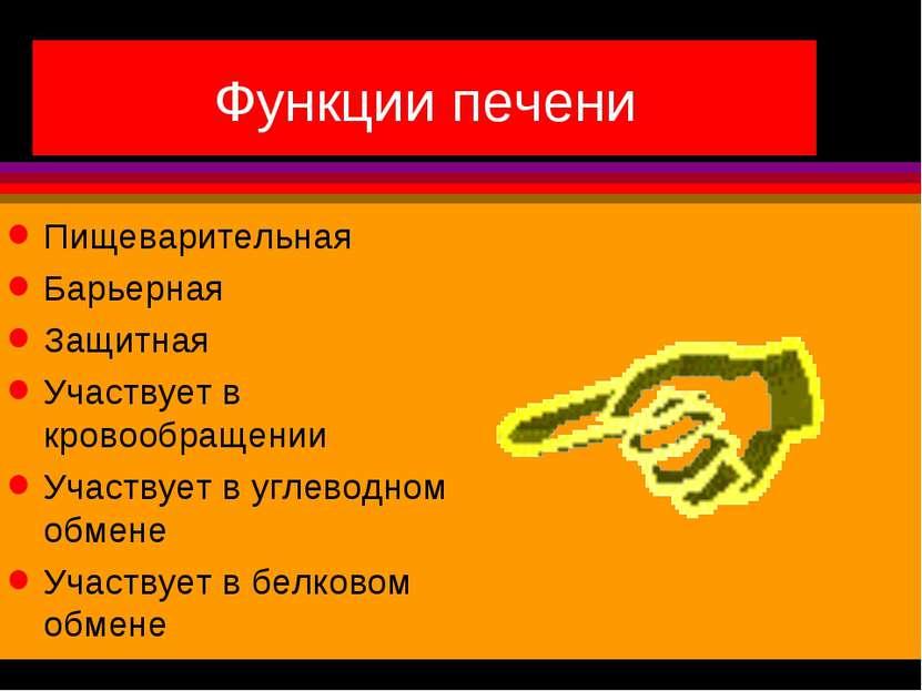 Функции печени Пищеварительная Барьерная Защитная Участвует в кровообращении ...