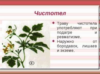 Чистотел Траву чистотела употребляют при подагре и ревматизме. Наружно от бор...