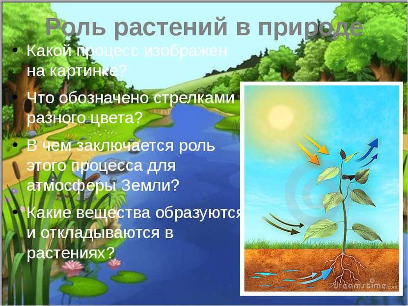 Роль растений в природе Какой процесс изображен на картинке? Что обозначено с...