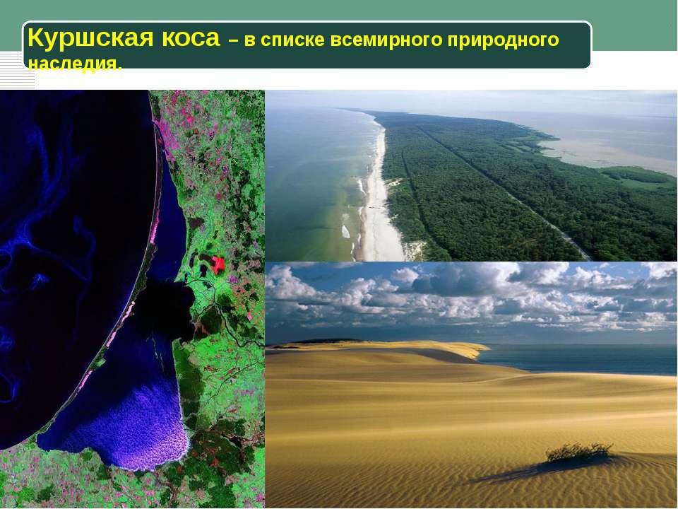 Куршская коса – в списке всемирного природного наследия.