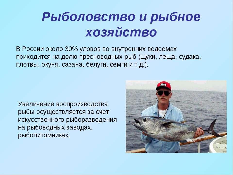 Рыболовство и рыбное хозяйство В России около 30% уловов во внутренних водоем...