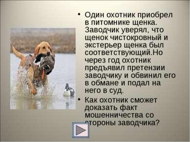 Один охотник приобрел в питомнике щенка. Заводчик уверял, что щенок чистокров...