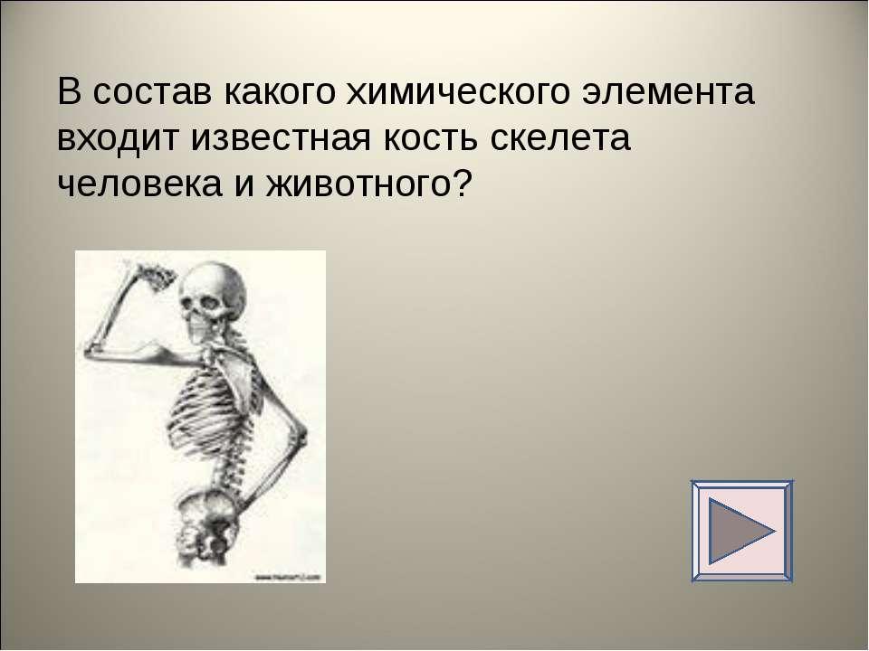 В состав какого химического элемента входит известная кость скелета человека ...