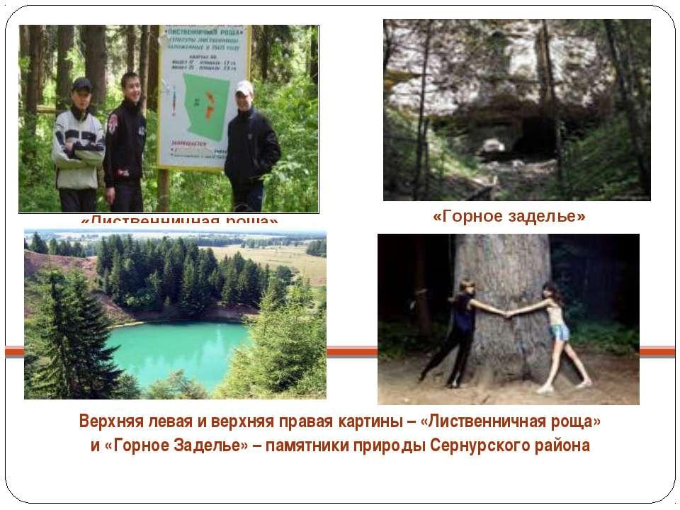 Верхняя левая и верхняя правая картины – «Лиственничная роща» и «Горное Задел...