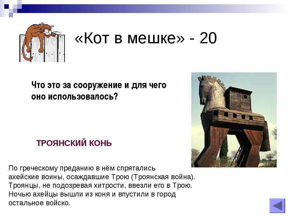 «Кот в мешке» - 20 Что это за сооружение и для чего оно использовалось? По гр...