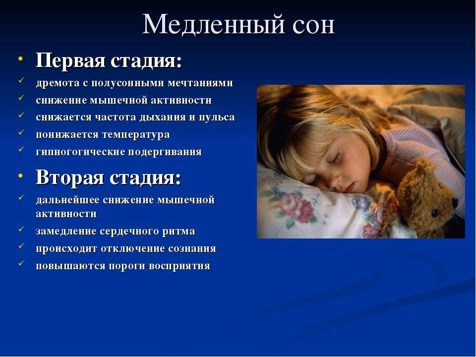 Медленный сон Первая стадия: дремота с полусонными мечтаниями снижение мышечн...