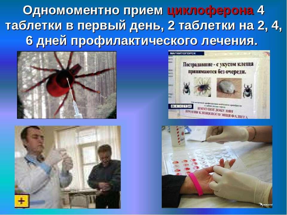 Одномоментно прием циклоферона 4 таблетки в первый день, 2 таблетки на 2, 4, ...