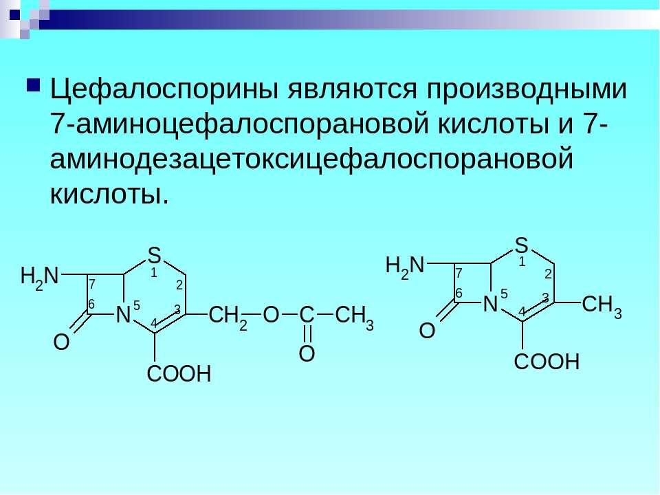 Цефалоспорины являются производными 7-аминоцефалоспорановой кислоты и 7-амино...