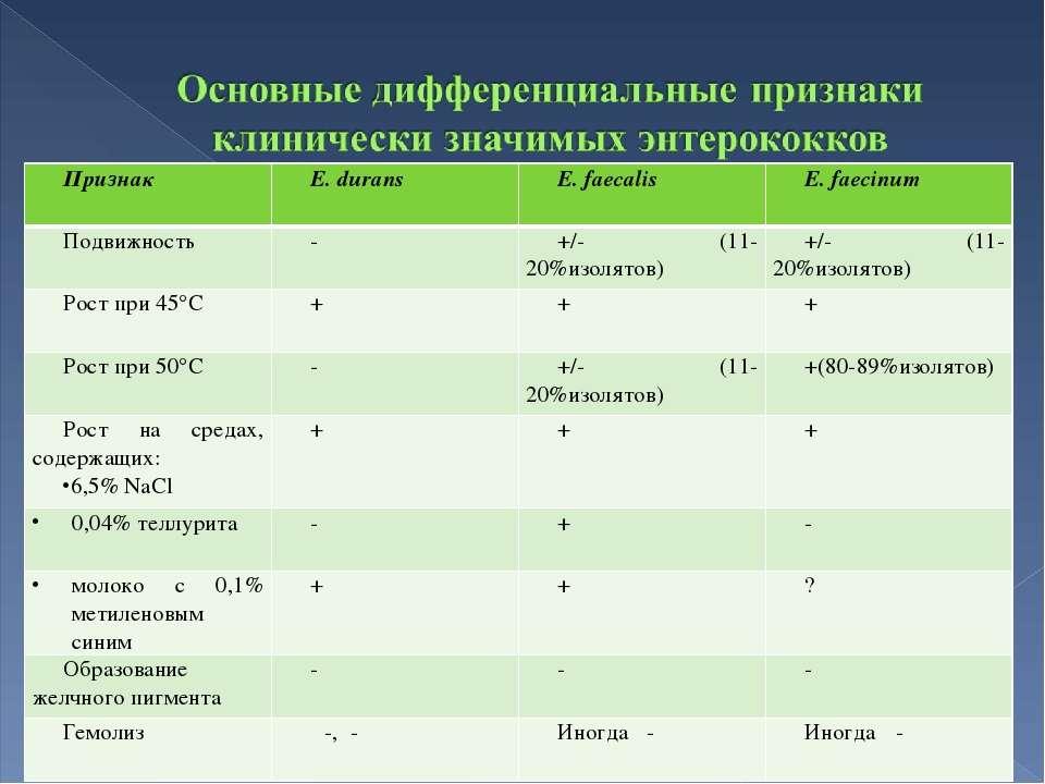 Признак E. durans E. faecalis E. faecinum Подвижность - +/- (11-20%изолятов) ...