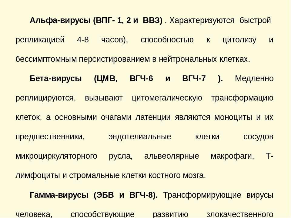Филогенетическая классификация герпесвирусов человека Альфа-вирусы (ВПГ- 1, 2...