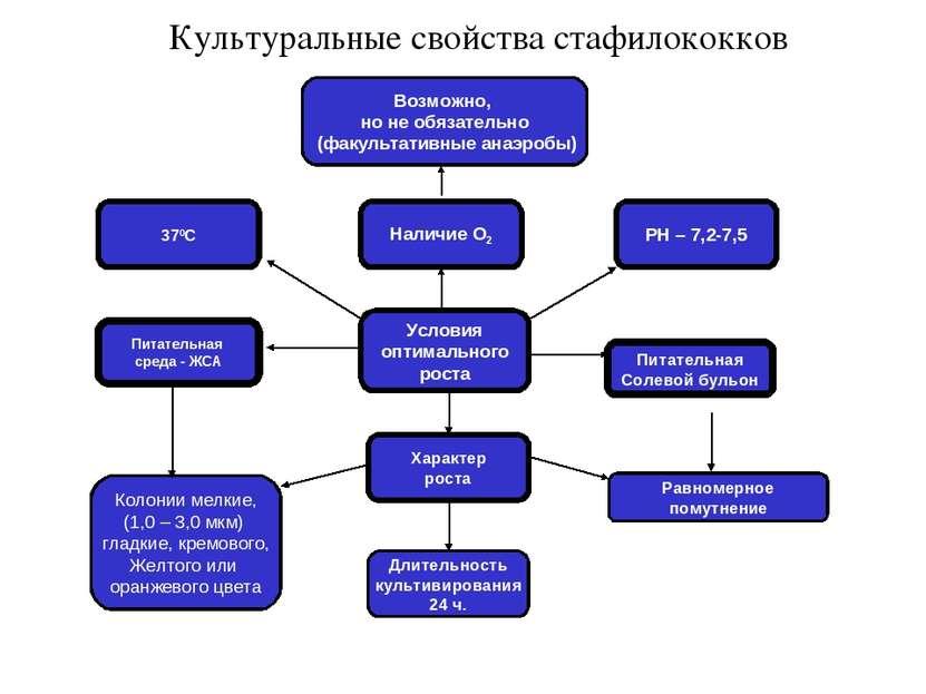 Культуральные свойства стафилококков