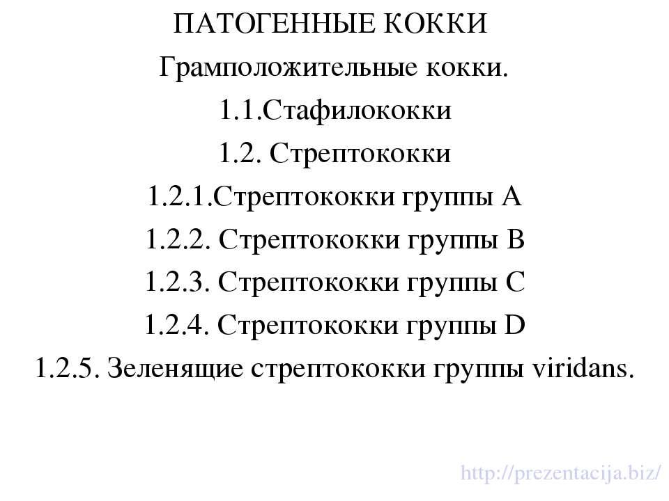 ПАТОГЕННЫЕ КОККИ Грамположительные кокки. 1.1.Стафилококки 1.2. Стрептококки ...