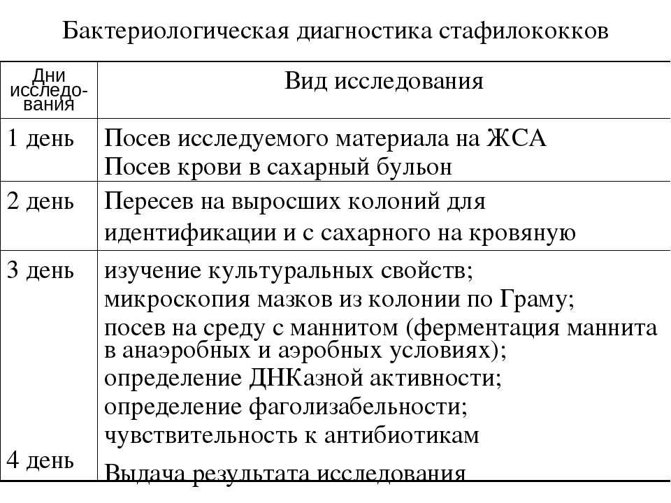 Бактериологическая диагностика стафилококков Дни исследо-вания Вид исследован...