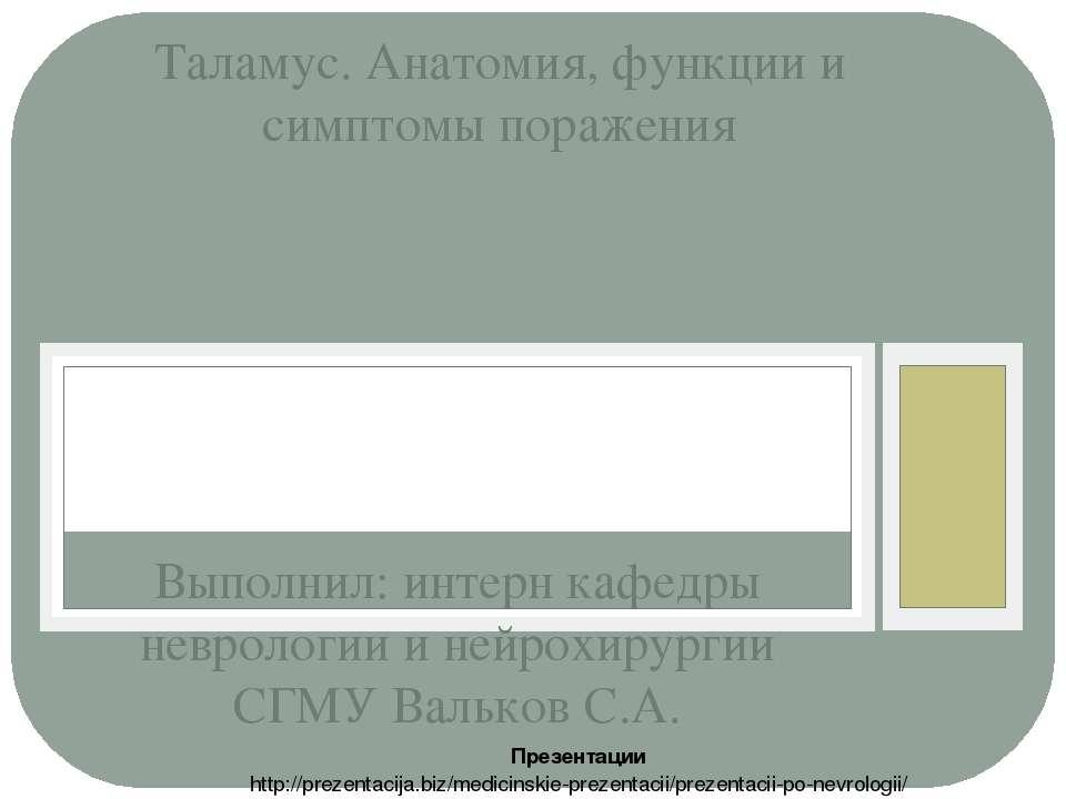 Выполнил: интерн кафедры неврологии и нейрохирургии СГМУ Вальков С.А. Таламус...