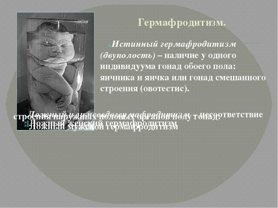 Гермафродитизм. Истинный гермафродитизм (двуполость) – наличие у одного индив...