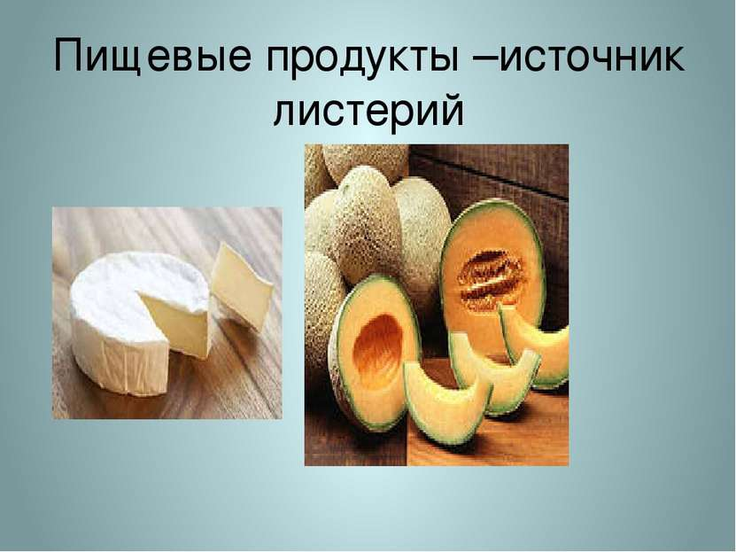 Пищевые продукты –источник листерий