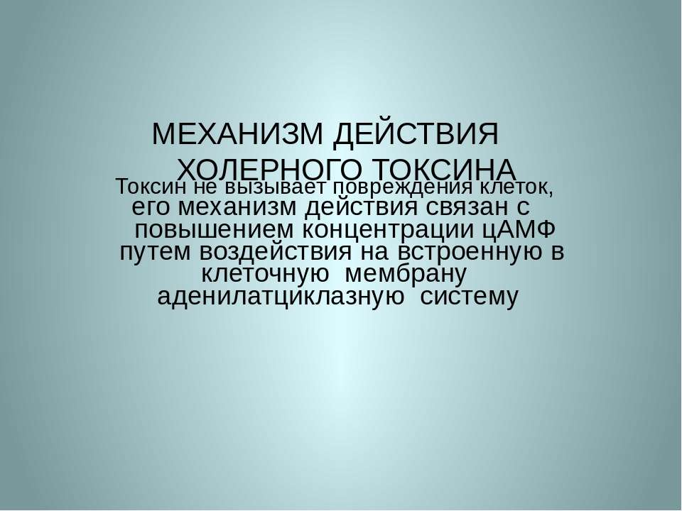 МЕХАНИЗМ ДЕЙСТВИЯ ХОЛЕРНОГО ТОКСИНА Токсин не вызывает повреждения клеток, ег...