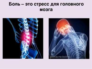 Боль – это стресс для головного мозга Single Answer 10 30 Uncertain 10 30 noc...
