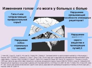 Изменения головного мозга у больных с болью 1. Harris RE, Clauw DJ, Scott DJ,...