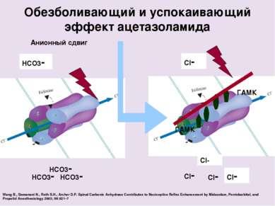 Cl- ГАМК ГАМК Cl- Cl- Cl- Cl- HCO3- HCO3- HCO3- HCO3- Анионный сдвиг Обезболи...