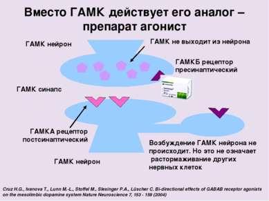 ГАМК нейрон Вместо ГАМК действует его аналог – препарат агонист ГАМК синапс Г...