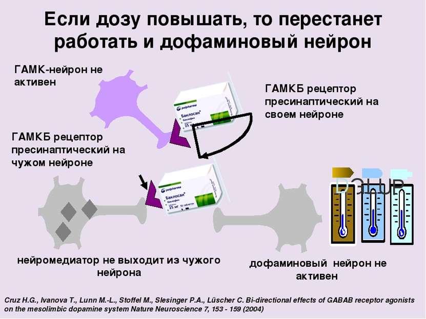 Если дозу повышать, то перестанет работать и дофаминовый нейрон Cruz H.G., Iv...