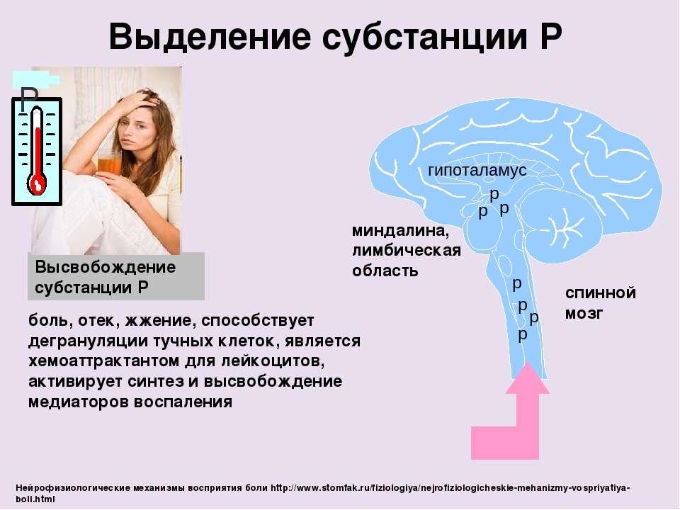 p боль, отек, жжение, способствует дегрануляции тучных клеток, является хемоа...
